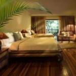 Cyberview Resort & Spa Deluxe Chalet