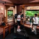 Cyberview Resort & Spa Gym
